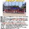 学童野球NSジュニア選手募集!!の画像