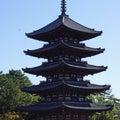 奈良旅行(興福寺編)