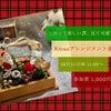 【出張レッスン】Xmasのワクワクを詰め込んで☆の画像
