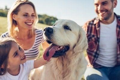 犬が理解しやすい 人気の名前 6つ めざせ 社会復帰 楽天ブログ
