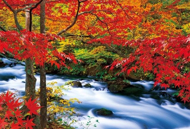奥入瀬渓流(紅葉)流れ | まっくのブログ