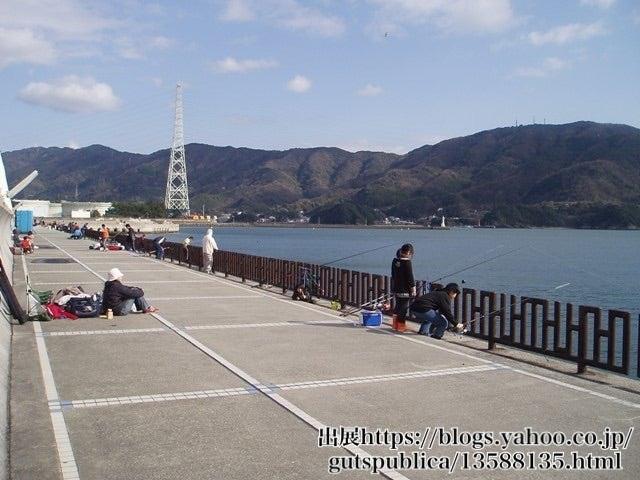 釣り 和歌山 マリーナ シティ