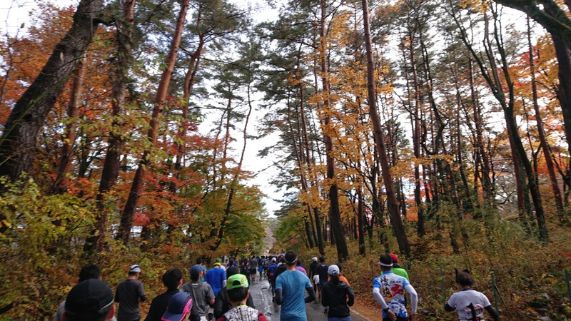 Image result for 富士山マラソン2019