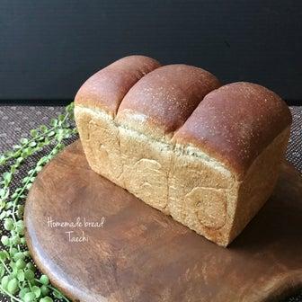 レーズン酵母コーヒーキャラメル食パンと東山動物園