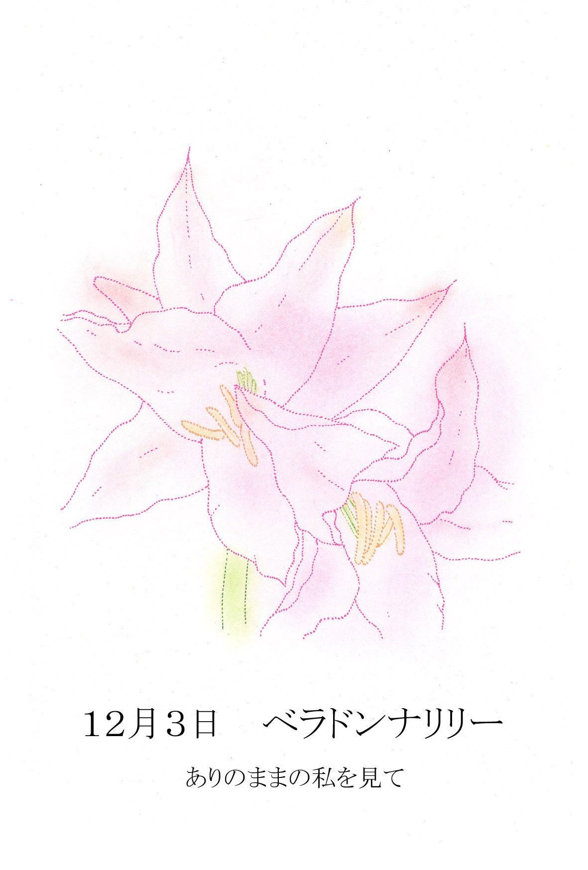 言葉 ベラドンナ 花