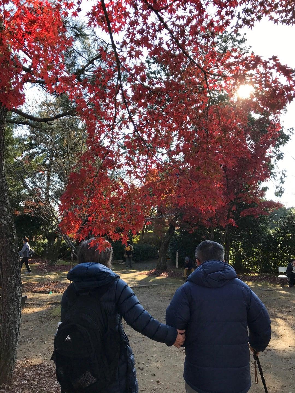 晩秋の京都・真如堂と今熊野観音寺【旅の1日目】の記事より