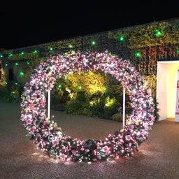 画像 富士市柚木の美容室 AMOR(アモール)オーナーブログ☆ラグナシア イルミネーション☆ の記事より 4つ目