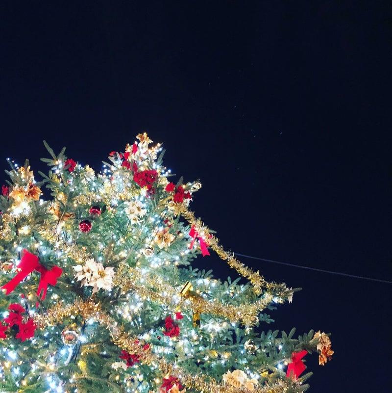 冬空とクリスマスツリーのイメージ