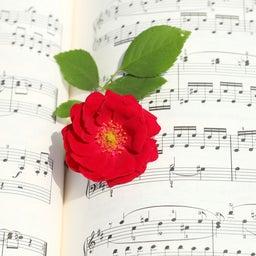 画像 空からメロディーは降ってこない〈袖ケ浦市 ピアノ エレクトーン くらの音楽教室〉 の記事より