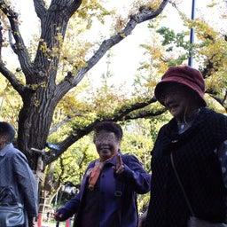 画像 cocomi trip  銀杏並木の神宮外苑へ の記事より 4つ目