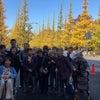 cocomi trip  銀杏並木の神宮外苑への画像