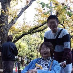 画像 cocomi trip  銀杏並木の神宮外苑へ の記事より 5つ目