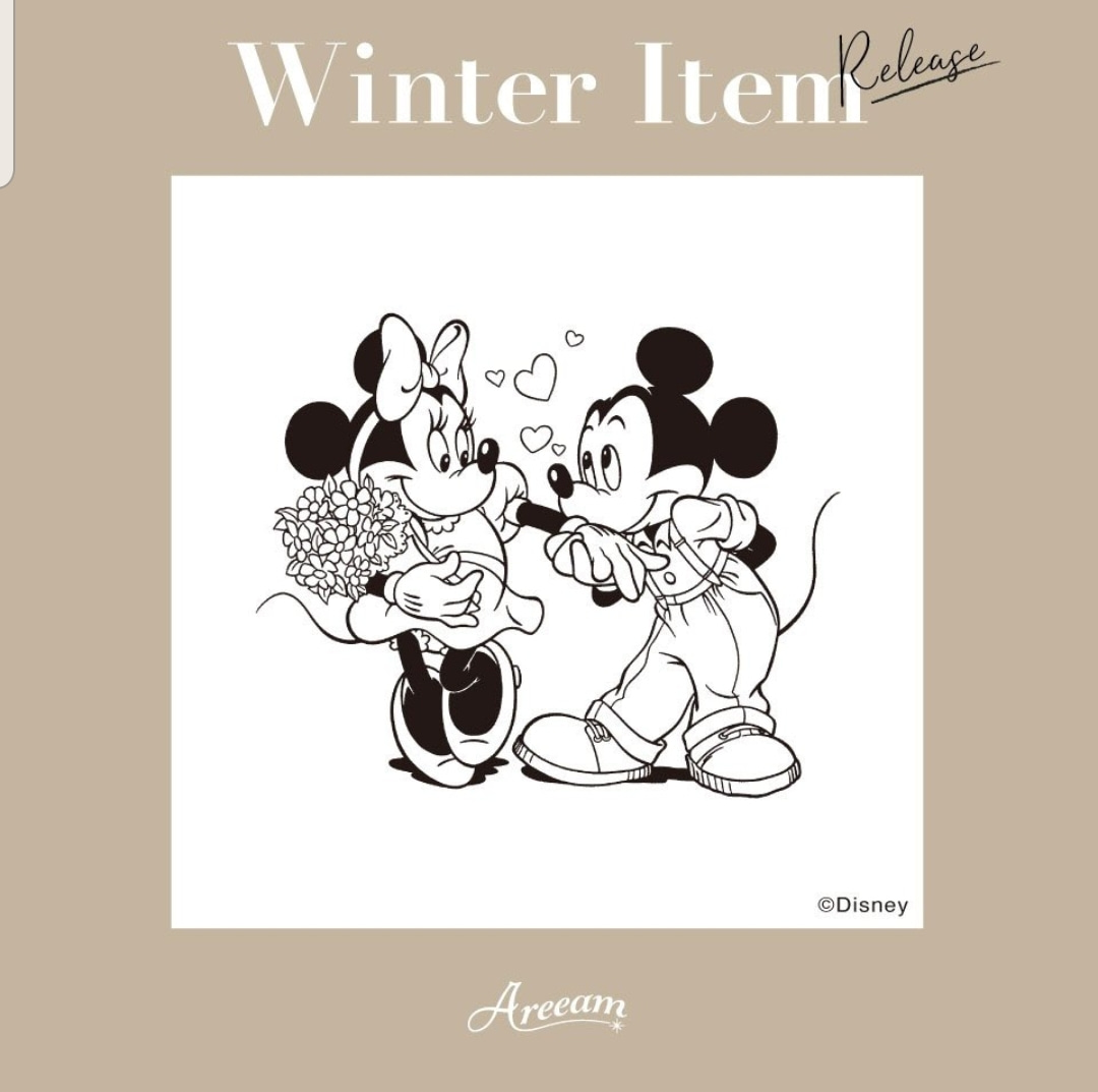 Areeamから可愛いディズニーグッズ 艸 ミニーのブログ