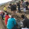 泉州タマネギ、エコ栽培を体験しようの画像