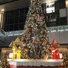 12月7日・クリスマスツリーの日…(#5761)の画像