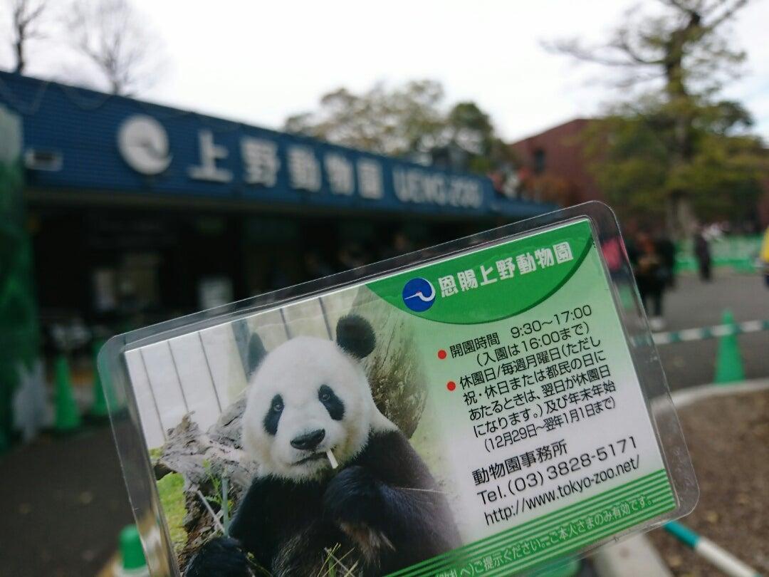 上野 動物園 年末 年始