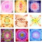 ♡結晶の花「凜花」の記事より