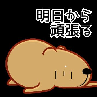 ダイソージグ・・・(*^_^*)