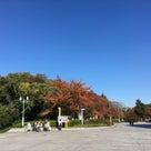 大阪観光の記事より