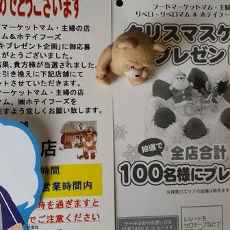 12/13 クリケー通知来た~!