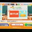 ことば検定 & お天気検定 on 12/13