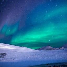 画像 12月14日・南極の日…(#5769) の記事より 1つ目