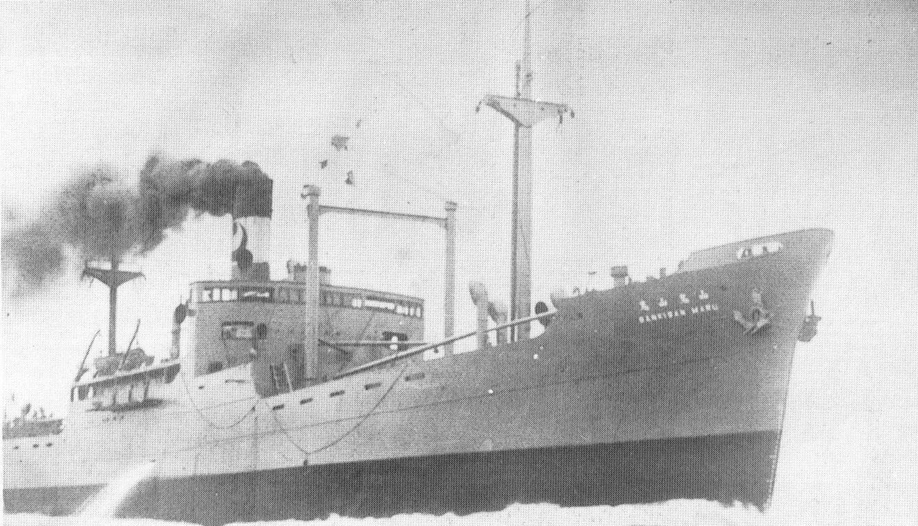初鷹型急設網艦