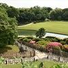 岡山 日本三大名園 後楽園内の画像