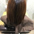 年末、ナチュラルハーブカラーでの繰り返した髪の状態 2の記事より