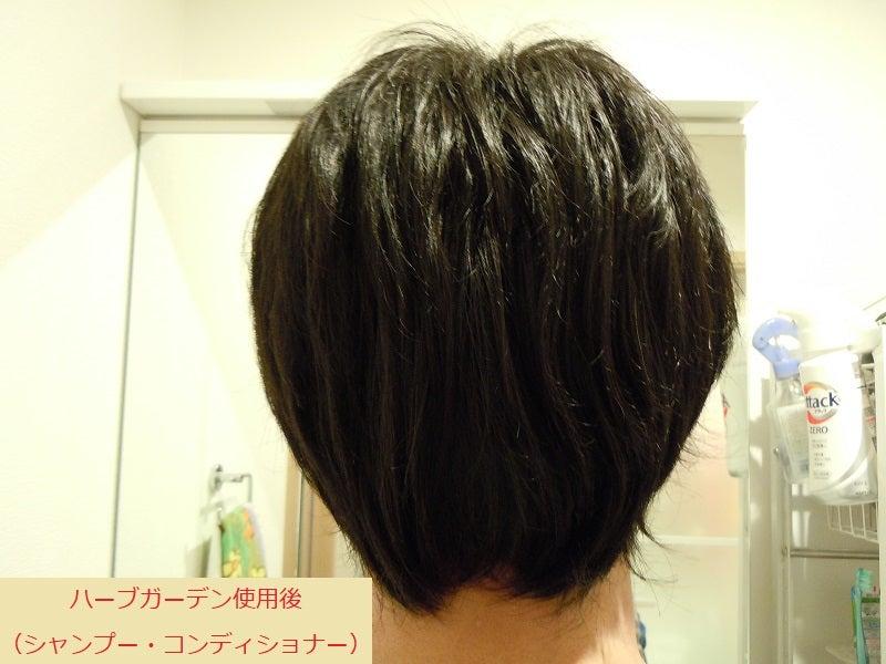 ハーブガーデンシャンプー くせ毛