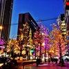 キラキラ☆御堂筋のライトアップがとっても綺麗でした!!の画像
