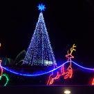 もうすぐクリスマスですね♥の記事より
