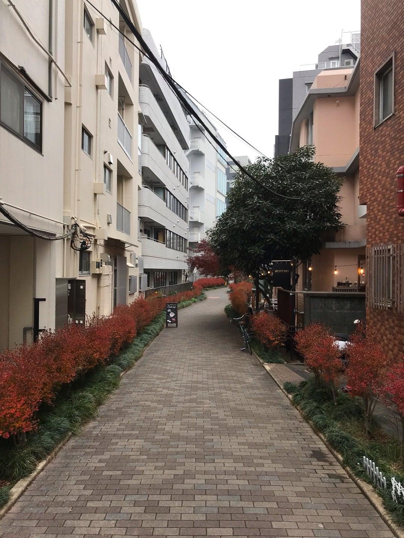 大都会の渋谷にもかつては川が流れていました