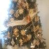 クリスマスツリーで恋愛成就の画像