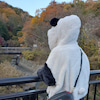 桜坂さやさ (*- -)(*_ _) 2019年の画像