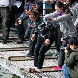 画像 徳山クイーンズクライマックス@cafe(最終日12/31、シリーズ戦版)、平田選手が初V水神祭 の記事より 36つ目