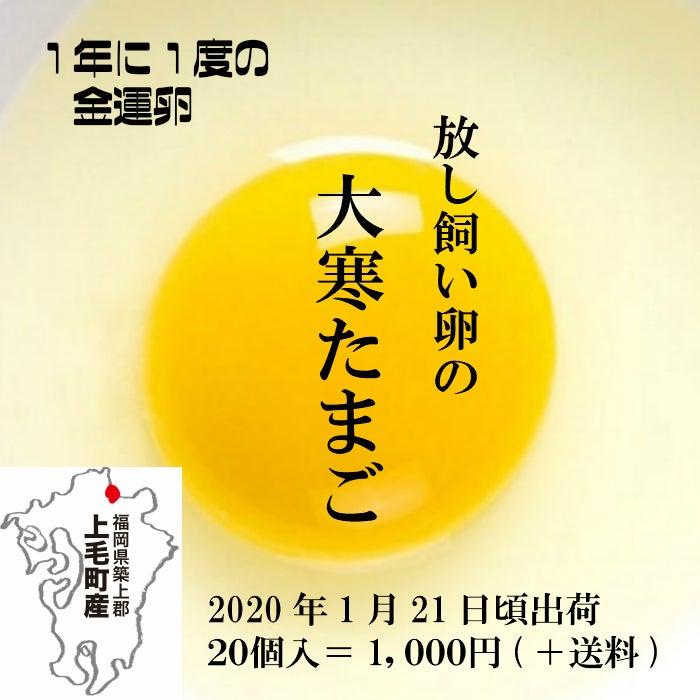 大寒卵2_コピー.jpg