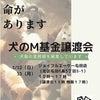 譲渡会のお知らせ 1/12(日)1/13(月)の画像