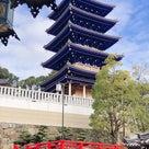 着物で初詣。今年は中山寺と呉服神社をハシゴしました。お寺と神社のお詣りの違いも復習の記事より