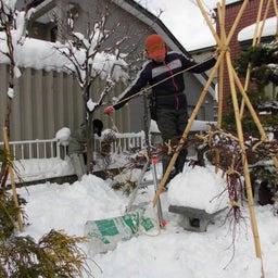 画像 冬囲いはアートステージ2 の記事より 6つ目