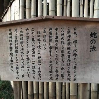 不思議体験日記(大宮氷川神社の〈蛇の池〉に住む龍神から 参拝者へ注意とお願い4)