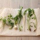 1月7日!!「七草粥」と「片づけ」と「楽しむ」のセット習慣の記事より