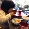 【食育講座】味覚の形成期に大切なことの画像
