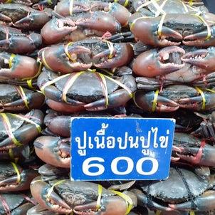 タイ。年末年始紀行7の画像