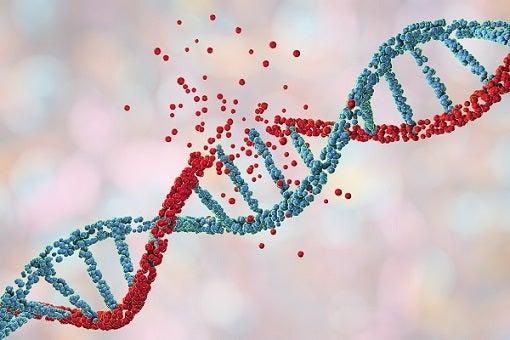 デトックス 遺伝子ダメージ