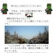 1/19【くにたち桜…