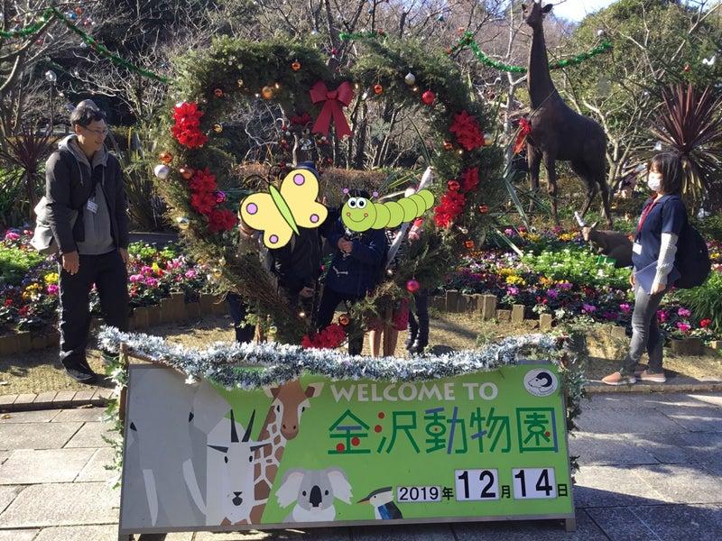 o1080081014695934735 - ♪12月14日(土)♪toiro戸塚