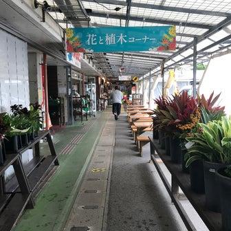 おんな道の駅(沖縄県恩納村)