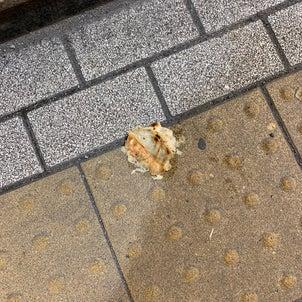 【さすが宇都宮】餃子の聖地らしい光景が・・・の画像