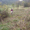 指宿協生農園の開墾画像